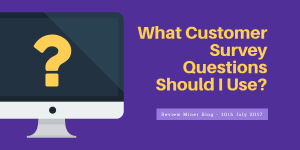 Customer Survey Questions Blog Post